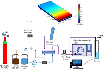 Modeling and Experimental Study of Carbon Dioxide Absorption in a Flat Sheet Membrane Contactor