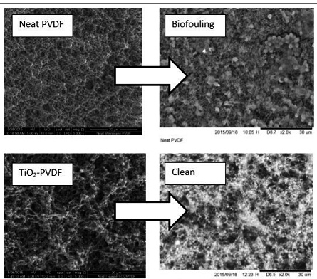Performance of Chemically Modified TiO2-poly (vinylidene fluoride) DCMD for Nutrient Isolation and Its Antifouling Properties