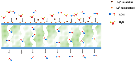 Recent Developments in Fouling Minimization of Membranes Modifed with Silver Nanoparticles